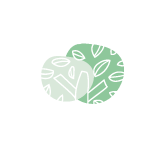 Terre Buissonnière